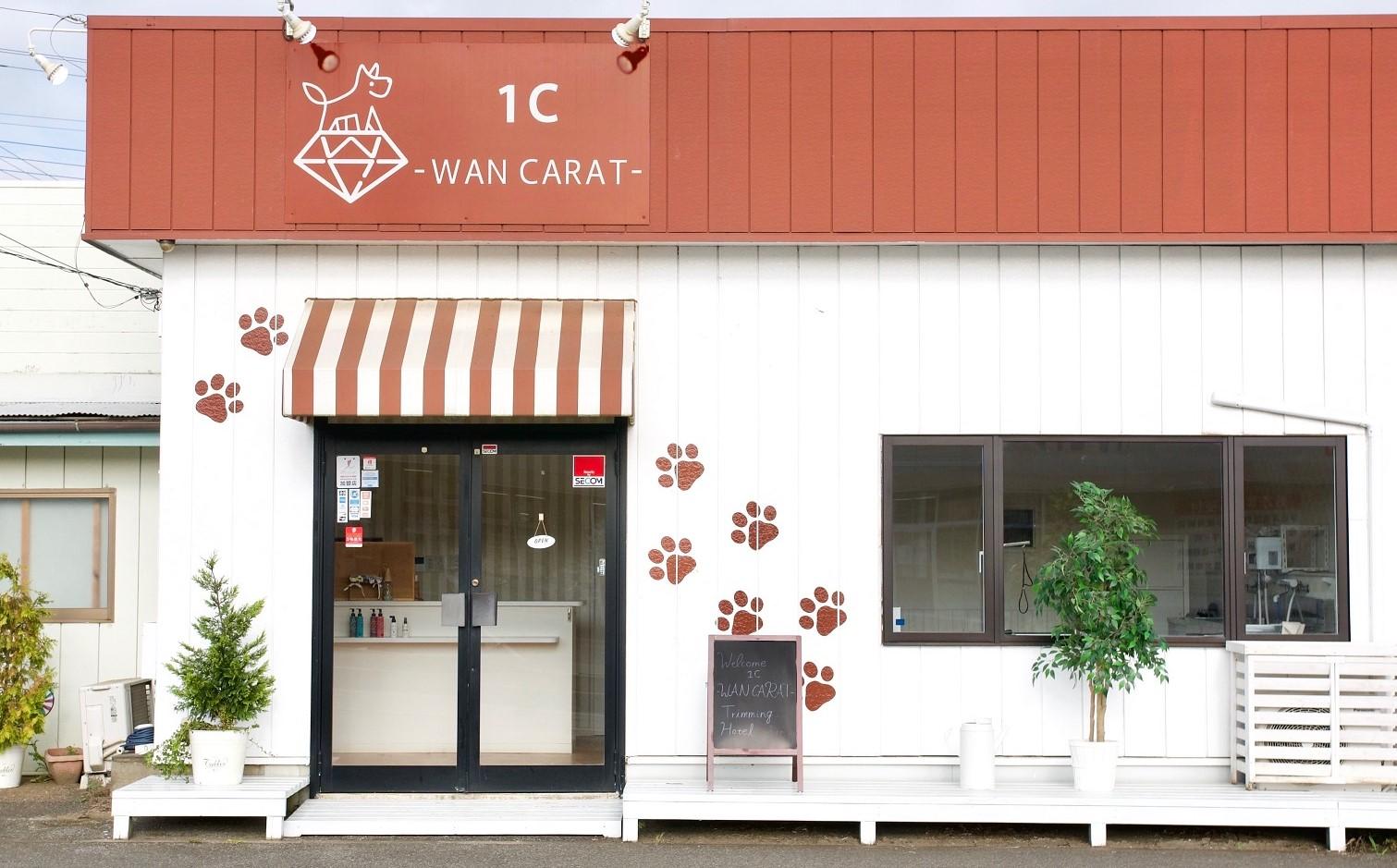 1C-WAN CARAT-成田店